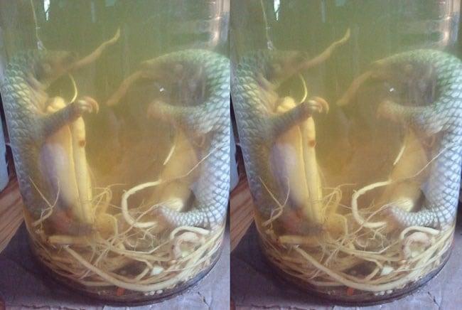 Hình ảnh Những đặc sản cường dương được quý ông Việt rỉ tai nhau săn đón số 3