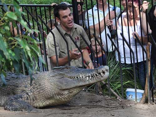 Kinh hãi chứng kiến cá sấu ngoạm tay người lôi xuống hồ 5