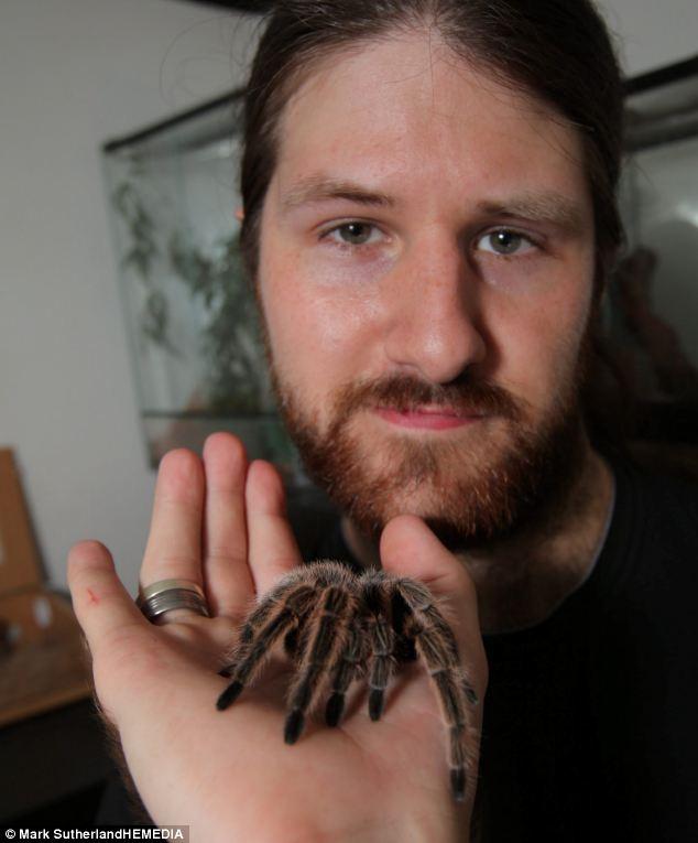 Người đàn ông chung sống với rắn, thằn lằn, nhện 11