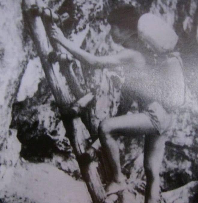 Toàn cảnh mặt trận biên giới Vị Xuyên 1984-1989 5