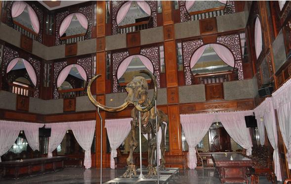 Hình ảnh Cận cảnh các biệt thự xa hoa bậc nhất của đại gia Việt số 17