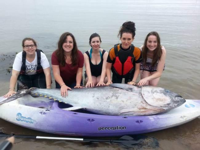5 cô gái bắt được con cá ngừ khổng lồ trị giá hơn 35 tỷ đồng 4