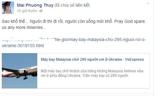 Sao Việt bàng hoàng vụ máy bay Malaysia rơi ở Ukraine  9