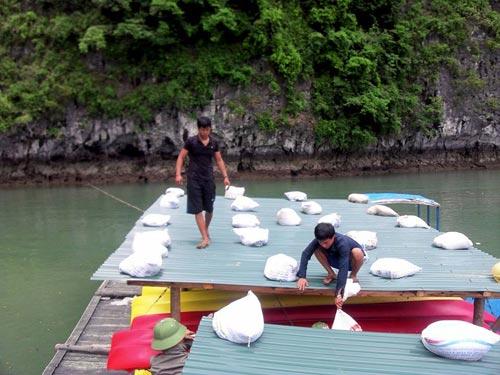 Quảng Ninh: Đưa dân lên hang động tránh bão Thần Sấm  6