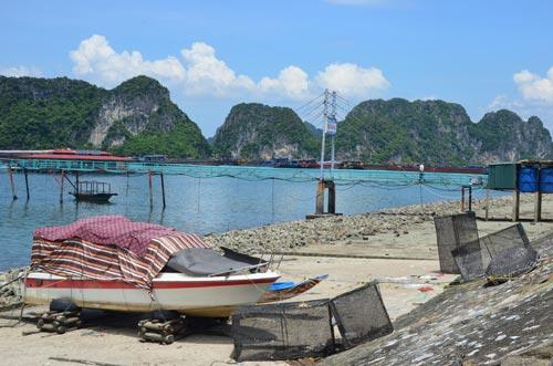 Quảng Ninh: Đưa dân lên hang động tránh bão Thần Sấm  7