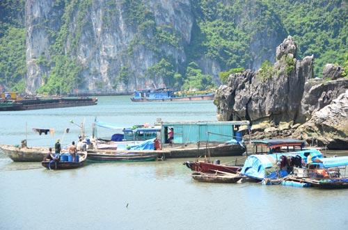 Quảng Ninh: Đưa dân lên hang động tránh bão Thần Sấm  8