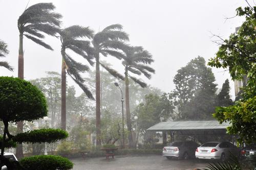 Hình ảnh mới nhất bão số 2 - bão Thần Sấm đổ bộ vào đất liền 12