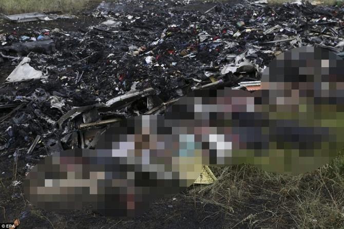Nhân chứng MH17 kể lại giây phút rơi máy bay kinh hoàng 5