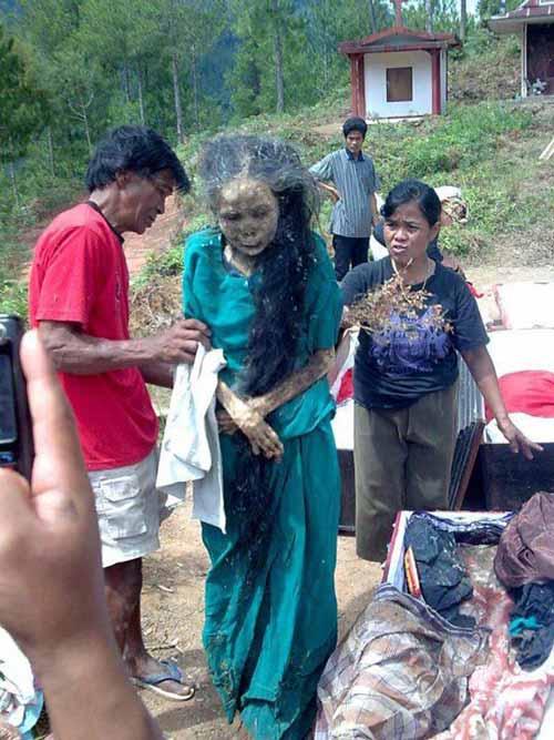 Sự thật chuyện xác chết đội mồ tìm đường về nhà ở Indonesia 4