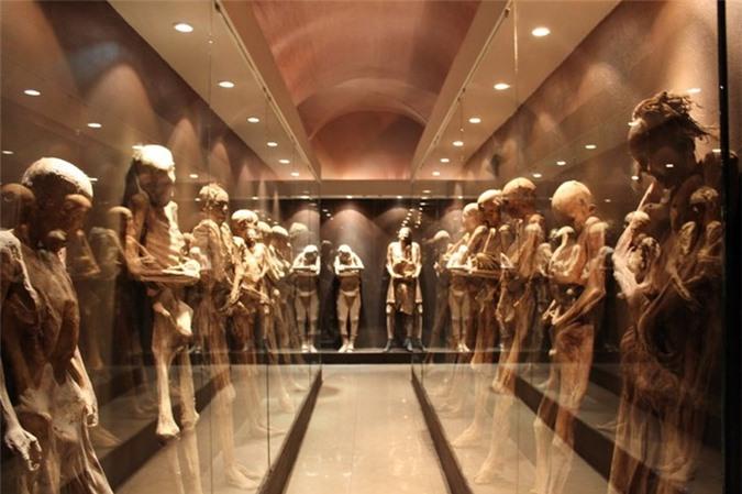 Rùng mình đến thăm bảo tàng xác ướp kỳ dị nhất thế giới 11