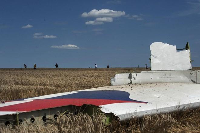 Mảnh vỡ MH17 bị cắt xén một cách bí ẩn 9
