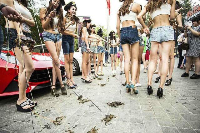 Dàn hot girl chân dài dắt cua đi dạo gây sốt cộng đồng mạng 6