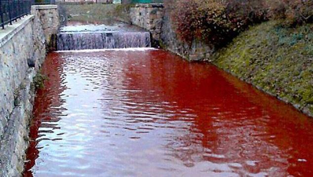 Kỳ lạ: Dòng sông bỗng chuyển màu đỏ như máu  9