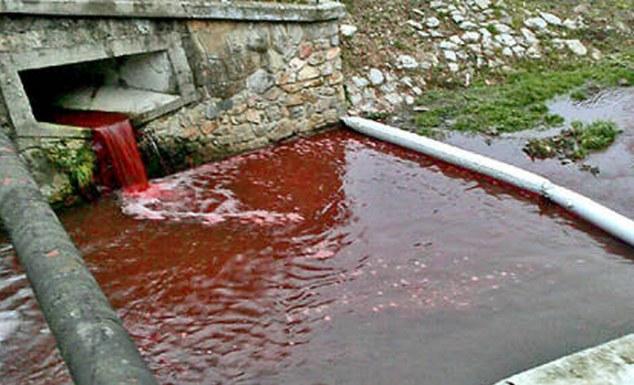 Kỳ lạ: Dòng sông bỗng chuyển màu đỏ như máu  8