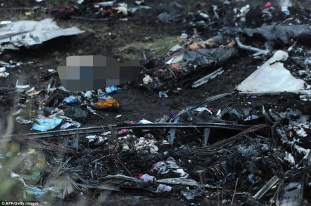 Thủ phạm bắn hạ MH17 sẽ mãi mãi là một bí ẩn? 8
