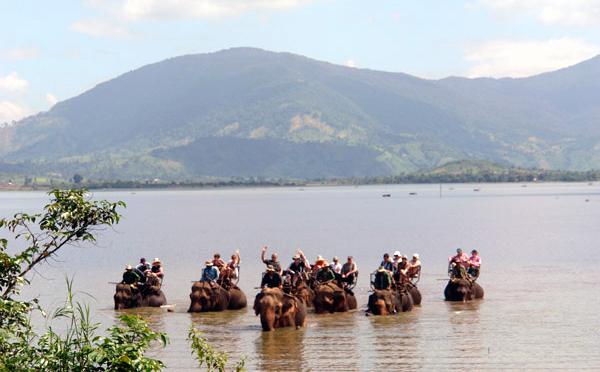 Hình ảnh Đại gia Tây Nguyên và đám ma voi hiếm có số 3