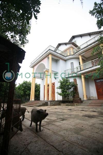 """""""Người đồng thừa kế"""" với ông Trần Văn Truyền lên tiếng về căn """"siêu"""" biệt thự 8"""