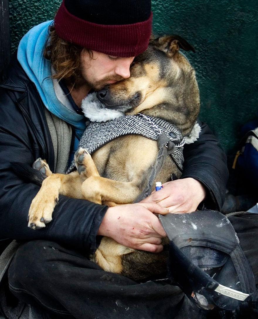 Hình ảnh Cảm động chú chó trung thành bảo vệ chủ dù bị đói số 1