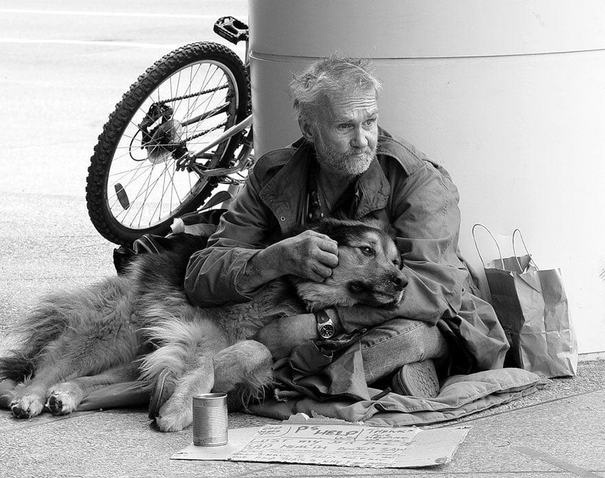 Cảm động chú chó trung thành bảo vệ chủ dù bị đói 16