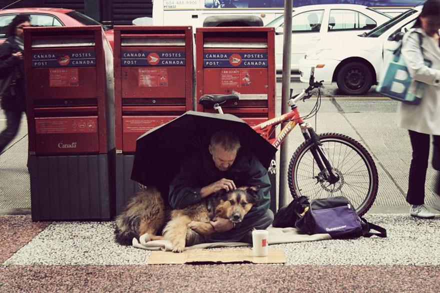 Hình ảnh Cảm động chú chó trung thành bảo vệ chủ dù bị đói số 2