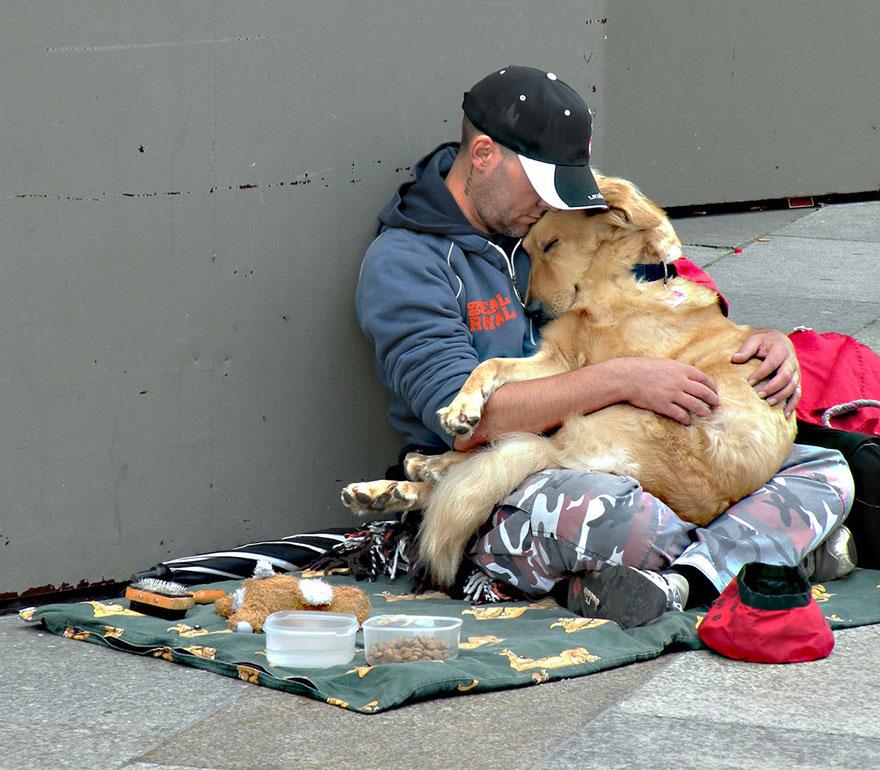 Hình ảnh Cảm động chú chó trung thành bảo vệ chủ dù bị đói số 4