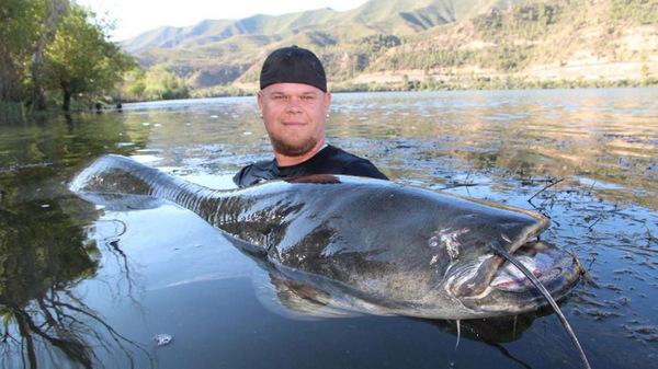 'Thủy quái' cá da trơn khổng lồ hơn 2m bị tóm gọn 6