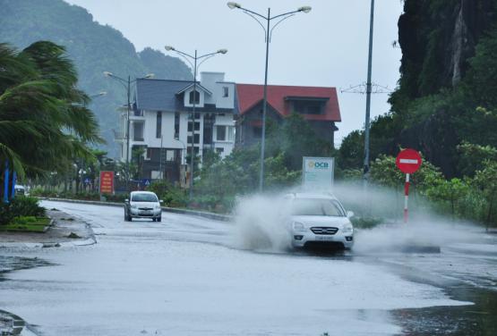 Tin bão số 3: Bão Kalmaegi càn quét Quảng Ninh gây thiệt hại khoảng 20 tỷ đồng 2