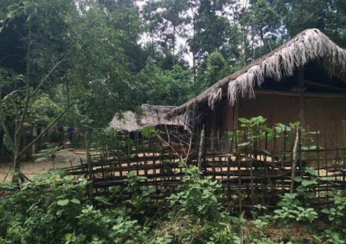 Bí ẩn về thung lũng trường sinh ở Việt Nam và món ăn từ loài kỳ thảo 8