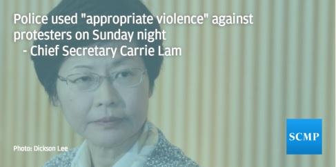 Biểu tình Hong Kong và những điều độc nhất vô nhị 4