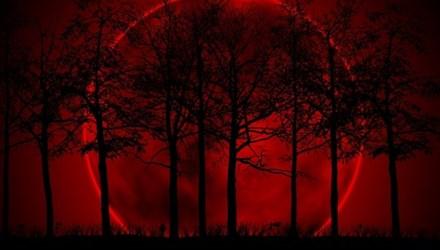"""Có thể quan sát hiện tượng """"Mặt Trăng máu"""" ở Việt Nam vào ngày 8/10"""