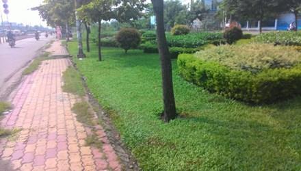 Bản tin 113 – sáng 10/7: Côn đồ miệt vườn hỗn chiến, 3 người thương vong… 5
