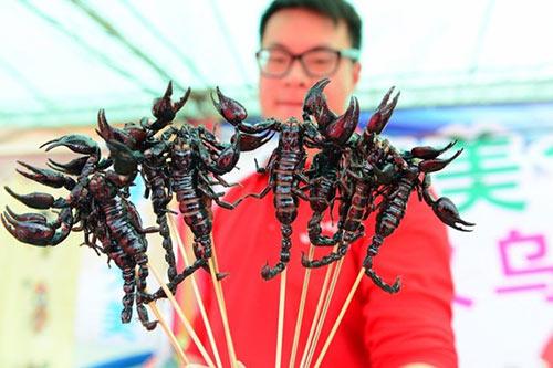 Rùng mình tham dự những lễ hội món ăn côn trùng  5