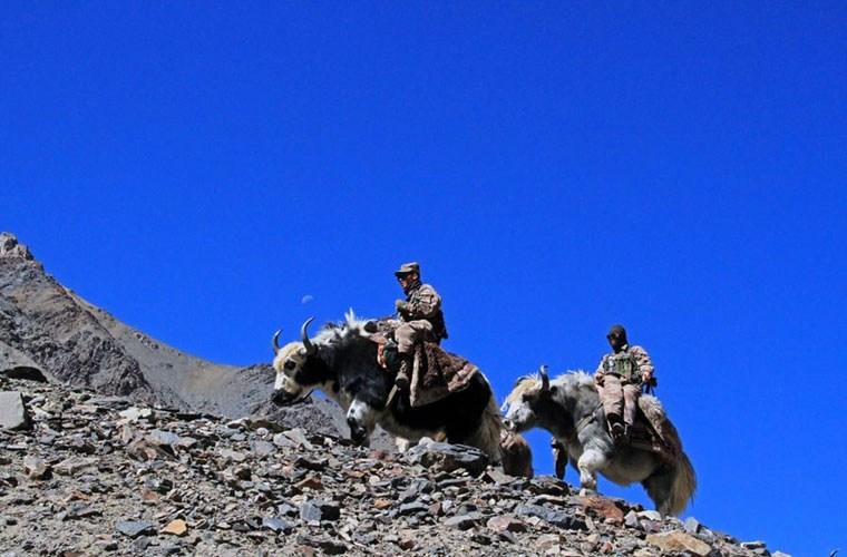 Cận cảnh binh lính Trung Quốc cưỡi bò tuần tra biên giới 5