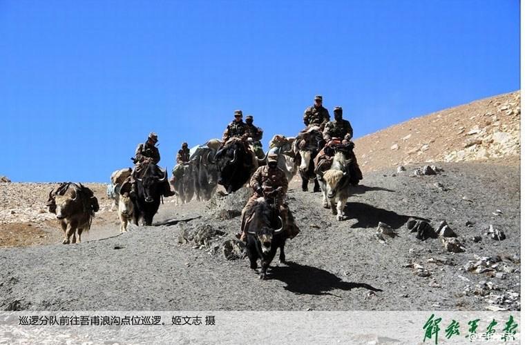 Cận cảnh binh lính Trung Quốc cưỡi bò tuần tra biên giới 11