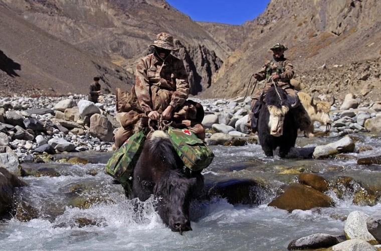 Cận cảnh binh lính Trung Quốc cưỡi bò tuần tra biên giới 12