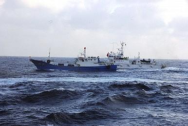 """Hình ảnh Tại sao ngư dân Trung Quốc cứ lao vào vùng biển """"nóng""""? số 1"""