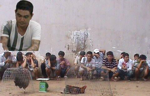 Đang say sưa sát phạt, 25 con bạc trong trường gà bị bắt giữ 5
