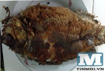 Bí quyết rán cá vàng rụm giòn tan hết mùi tanh 4
