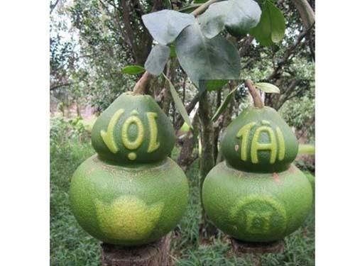 """Đại gia bạo tay chi tiền triệu đặt mua các loại quả """"độc"""" 8"""
