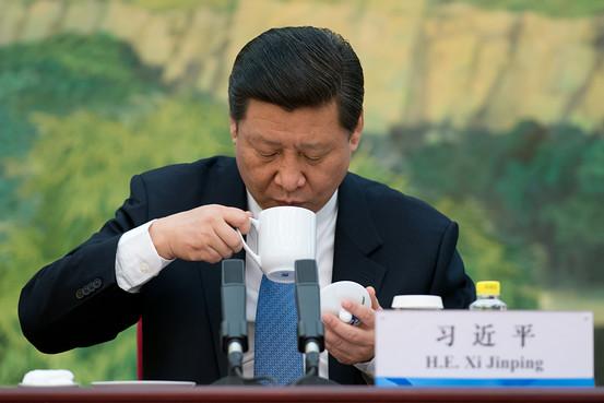 Người Trung Quốc đổ xô đi mua vật dụng ăn theo Tập Cận Bình 5
