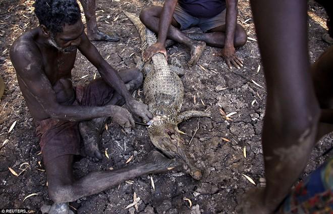 Cận cảnh buổi đi săn cá sấu nguy hiểm của bộ tộc Yolngu 11