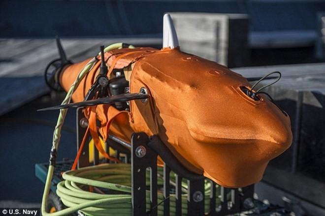 Hải quân Mỹ thử nghiệm robot gián điệp dạng cá ngừ 5