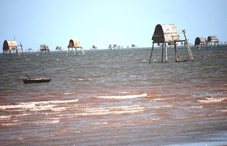 Vụ lật thuyền chở ngao, 6 người chết: Chính quyền không quản lý thuyền cào ngao của dân 5