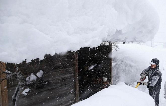 Chùm ảnh: Người Nhật chật vật chống chọi với bão tuyết  7