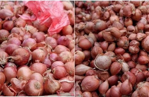 Cách phân biệt rau củ quả Trung Quốc 11