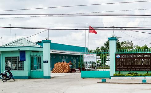 Cà Mau: Loạt đại gia thủy sản bị khởi tố, tạm giam 7