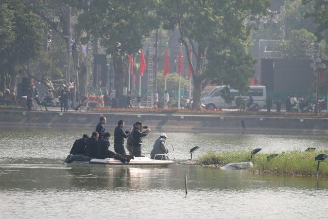 Cụ rùa hồ Gươm nổi lên phơi nắng trong ngày cuối năm 4