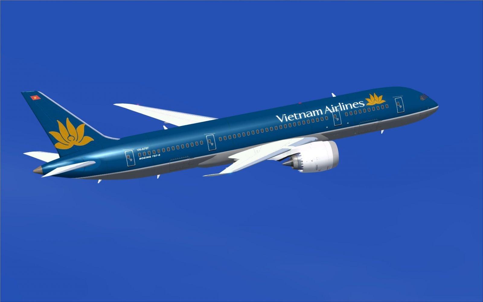 Hành khách 76 tuổi đột tử trên chuyến bay về Việt Nam 4