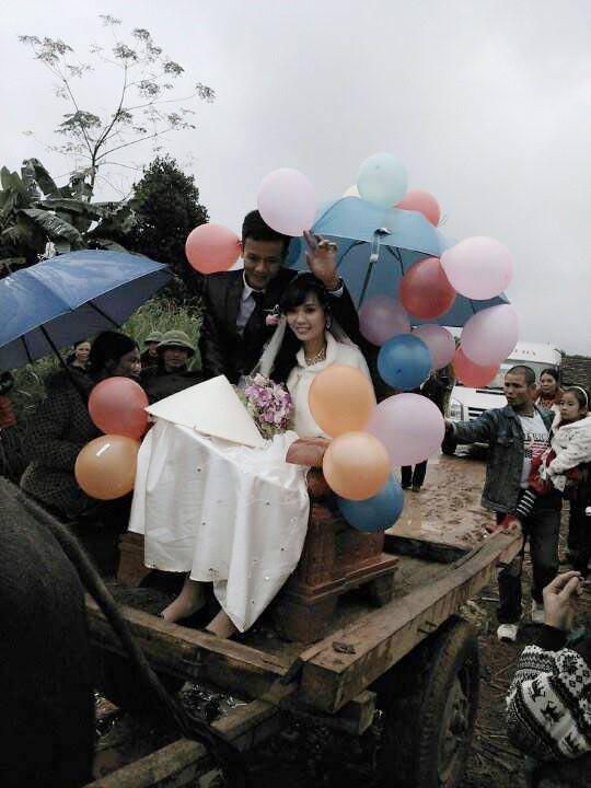 Rước dâu bằng xe bò gây xôn xao xứ Nghệ 6