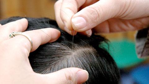 Hình ảnh Cách ngăn ngừa tình trạng tóc bạc sớm số 1